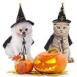Disfraces de Halloween para mascotas, divertidos estampados de bruja para gatos y perros pequeños, disfraz de Halloween para fiestas de cosplay, ropa de decoración de ropa para mascotas