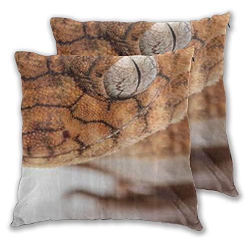 LONSANT Fundas de Cojines 45x45cm,Lagarto Iguana en el Reptil Salvaje,decoración Cuadrado Fundas de Almohada Funda de cojín para sofá Dormitorio,Pack de 2