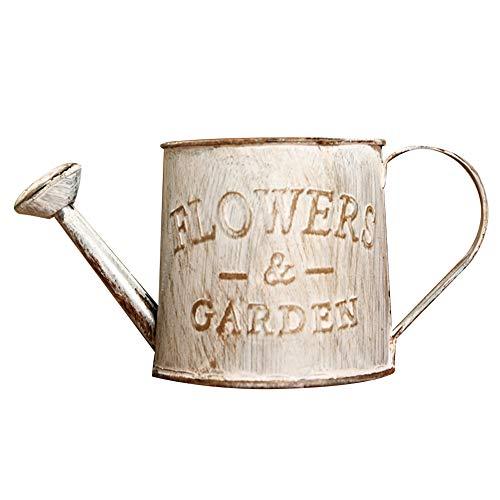 Demarkt Vintage gieter ijzer bloem irrigatie decoratie vintage bloemen pot emmer stijl B