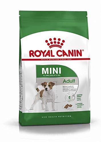 RoyalCanin Mini Adult 2kg. Comida para Perros de Razas Pequeñas y Toys | Pienso Gastrointestinal con Gran Sabor Que Controla el Peso, Elimina el Sarro Dental y Mantiene el Pelo y la Piel Saludables