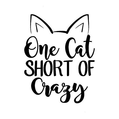 FreshZHY 2 Piezas, 12.2x15.5CMCar Etiqueta Reflectante, Negro Un Gato Corto de Crazy Creative Cat Impermeable con Reflectante para Pegatina para el Parachoques