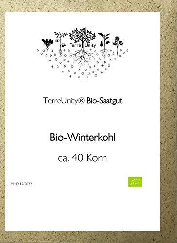 TerreUnity - Bio Saatgut Grünkohl | Winterkohl - bio - vegan - plastikfrei - ca. 200 Korn - für den eigenen Anbau im Garten, Hochbeet oder Balkon