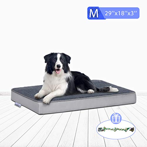 FOCUSPET Orthopedic Dog Bed Memory Foam Dog Bed Outdoor Dog Bed Mattress for Crate with Removable Washable Cover for Small, Medium and Large Dogs Size Medium(29''x18''x3'') Includes Chew Toy Beds