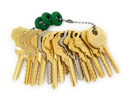 MSPowerstrange Professional 15 Key Residential Depth Key Set, O-Rings, Key Chains
