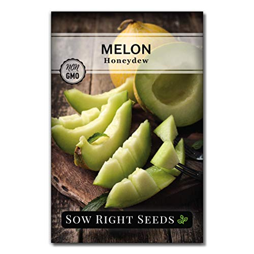 Sow Right Seeds - Green Honeydew Melon Seed for Planting - Non-GMO Heirloom Packet with Instructions to Plant a Home Vegetable Garden