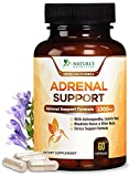 Adrenal Support and Stress Support 1300mg - Extra Strength Adrenal Fatigue Support Supplement - Ashwagandha, Licorice Root, Rhodiola Rosea and Other Herbs, Non-GMO, for Women and Men - 60 Capsules