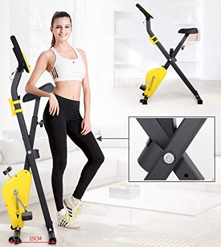CKR Multi-Functional Exercise Bike with Backrest Spinning, Home Soft Cushion Bicycle, Folding without Land