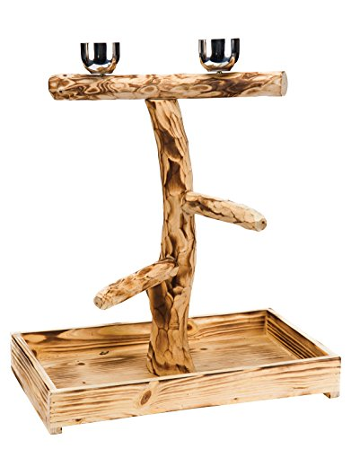 Penn-Plax Wood Bird Perch with 2 Stainless Steel Feeding Cups and Drop Tray for Large Birds - 19 Inch Height
