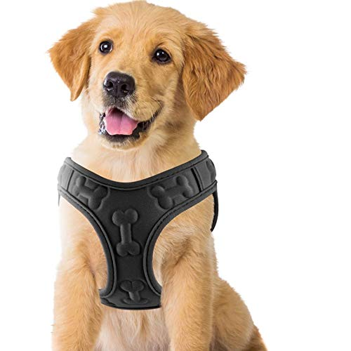 Comfort Fit, Soft Padded and Lightweight Dog Harness, Step in Dog Vest Harness for Small & Medium Dogs, Black, XS, Chest 11-12