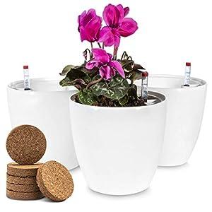 ZENAKIO - Lote de 3 Macetas Decorativas con Reserva de Agua y 6 Pastillas de Coco Incluidas, Blancas. Tiestos para Plantas con Indicador de Agua y Autorriego. Macetero para Plantas