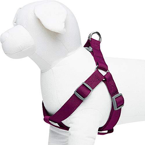 UMI. Essential Classic – Einfarbiges Hundegeschirr, Brustumfang 51cm–66cm, Lila, Medium, größenverstellbares Geschirr für Hunde