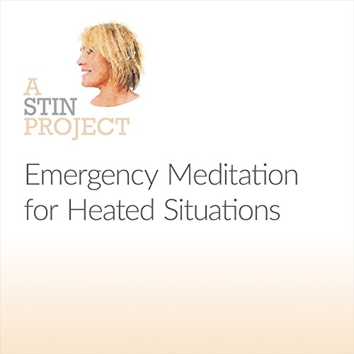 Emergency Meditation for Heated Situations cover art