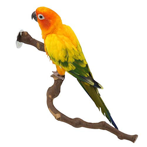 Wood Bird Stand Perch, Natural Wild Grape Stick Paw Grinding Standing Climbing Branch Toy Cage Accessories for Small and Medium Parrots Parakeets Cockatiels Lovebirds Sun Conures Caique (Z Shape)