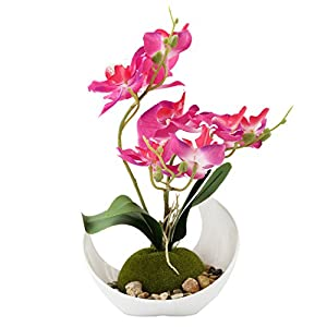 Modern Artificial Flower Decoration, Synthetic Orchids w/Sleek Curved Planter