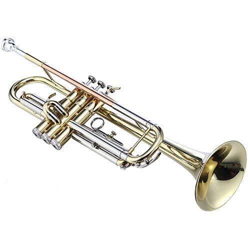 Leren spelen een kleine muziekinstrument trompet messing standaard bb uitgerust met handschoenen, mondstukken, draagtassen.