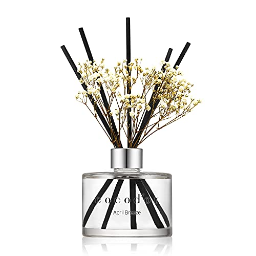 Cocodor Preserved Real Flower Reed Diffuser / April Breeze / 6.7oz(200ml) / 1 Pack / Reed Diffuser Set, Oil Diffuser & Reed Diffuser Sticks, Home Decor & Office Decor, Fragrance and Gifts