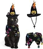 Disfraz de gato para Halloween, capa de Halloween y cono, sombrero de fiesta, con gorro de mago, para mascotas, perro, Halloween, con sombrero de bruja (esqueleto)