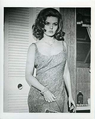 Deanna Lund Sexy Portrait from Tony Rome 8x10 Photo