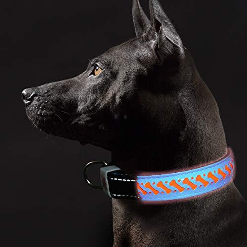 collar con luces para perros fabricante TRACE KASA