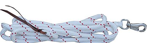 Reitsport Amesbichler AMKA Bodenarbeitsseil 4,25 m Bodenseil Führseil Horsemanship Arbeitsseil Bodenleine Rope Bodenarbeit