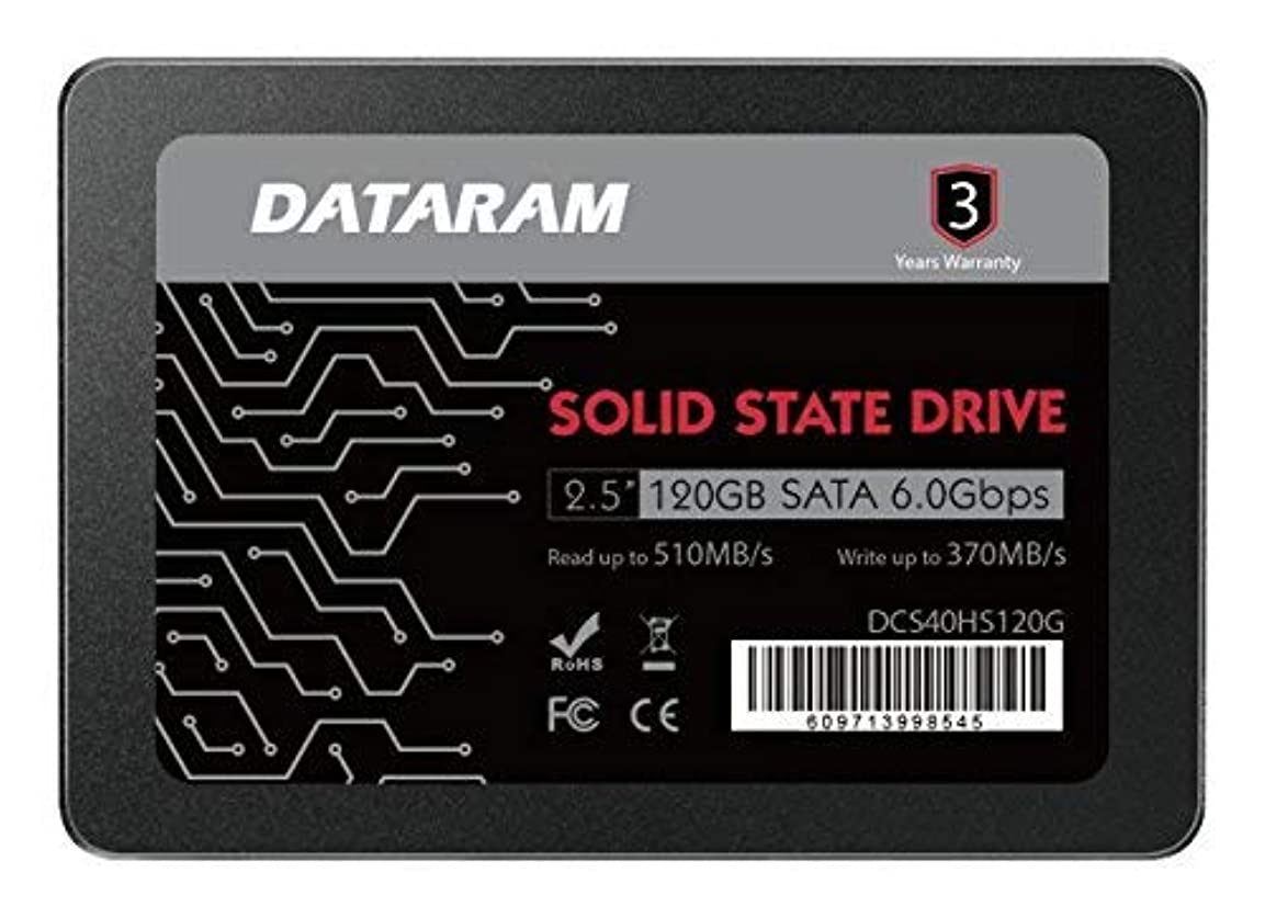 多くの危険がある状況老朽化したぼかすDATARAM 120GB 2.5