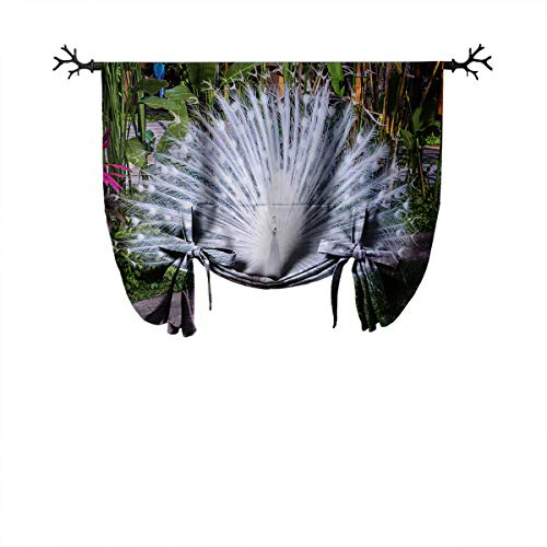 LanQiao Peacock Darkroom Roman Curtain Peacock Open His Tail Feathers in Tropical Garden Unusual Birds Nature Ornament Insulated Blackout Curtains W24 xL55 White Green