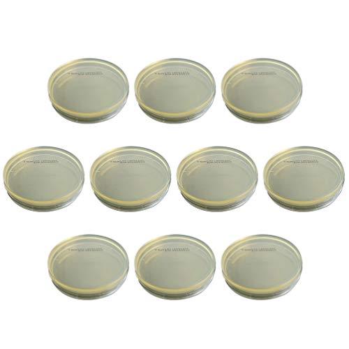 Hemobllo Placa de Petri – Paquete al vacío desechable de 10 piezas para determinar las placas de petri para placas de Agar R2a para laboratorio de experimentos científicos
