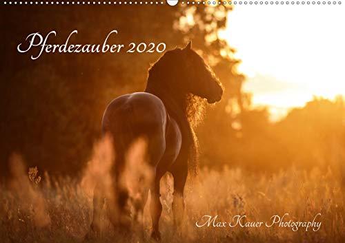 Pferdezauber 2020 (Wandkalender 2020 DIN A2 quer): Pferdemomente festgehalten in Bildern (Monatskalender, 14 Seiten ) (CALVENDO Tiere)