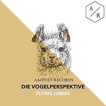 Flying Lamas