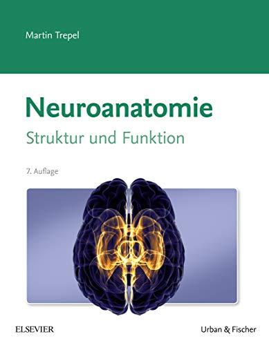 Neuroanatomie: Struktur und Funktion