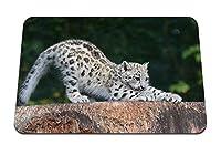 22cmx18cm マウスパッド (ユキヒョウカブすすり捕食者) パターンカスタムの マウスパッド