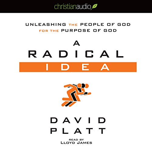 A Radical Idea audiobook cover art