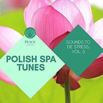 Polish Spa Tunes - Sounds To De Stress, Vol. 3