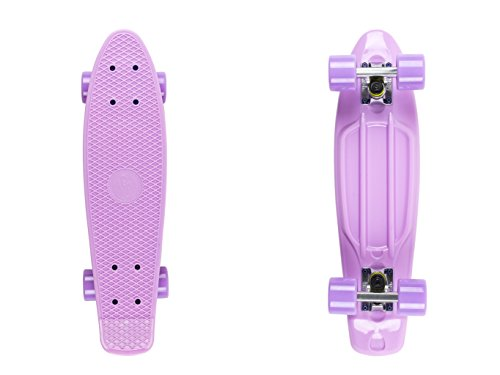 Fish Skateboards ® Classic Fish Leidenschaft • Stil • Qualität • Eine Größe • Multicolor Cruising Skateboard (Fish Classic summer purple/silver/summer purple)