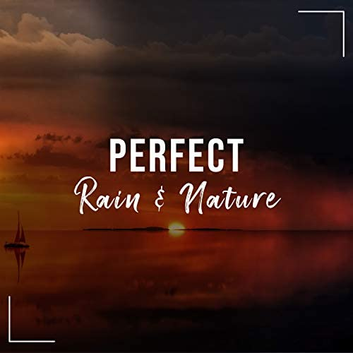 Rain Music Therapy & Relaxing Nature Sounds Collection