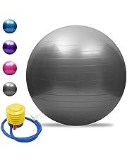 TOMSHOO Anti-burst Yoga Ball Verdikte Stabiliteit Balans Balans Pilates Barre Fysieke Fitness Oefenbal 45CM /55CM /65CM / 75CM Gift Luchtpomp