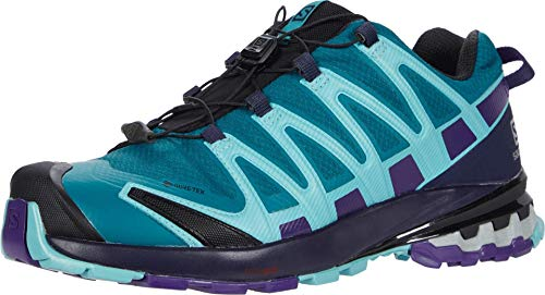 Salomon Damen XA PRO 3D v8 GTX W Trail Running Schuhe, Grün (Shaded Spruce/Evening Blue/Meadowbrook), 42 2/3 EU