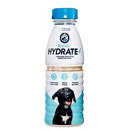 HYDRATE+ Dog 400ml, 1 peice