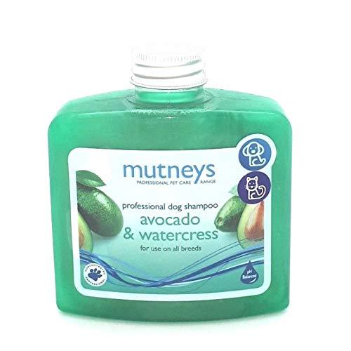 mutneys Profesional Pet Care Aguacate y Berro Perro champú, 250 ml ...