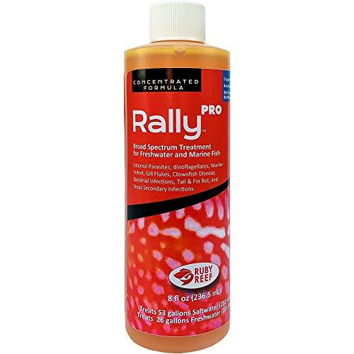 Rally PRO (8 oz