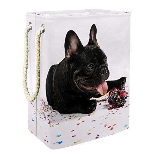 Bulldogge spielt mit Spielzeug Boîte De Rangement Rapide De Jouet Extérieur De Paniers De Stockage De Jouet,Organisateur De Jouet De Pièce D'Enfants 49x30x40.5 cm