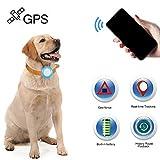 Localizzatore GPS per bambini, con localizzatore GPS per cane e gatto