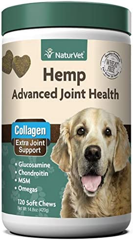 Top 10 Best arthritis pain relief for dogs Reviews