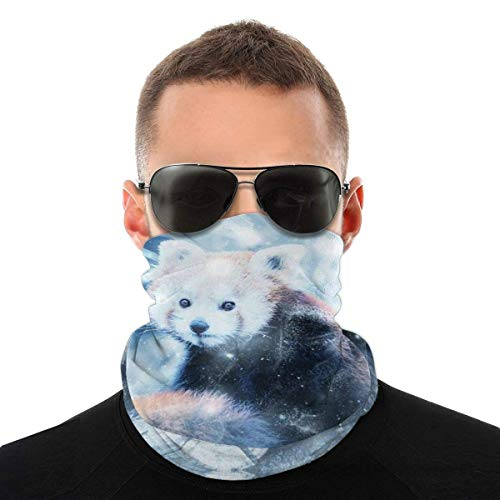 BaoBei-shop Ice Raccoon Fashion Hundred Changes Face Cover Head Scarf & Unisex Shield Face Face Cover Bandana Comfort Head Scarf Cravat Sports de Plein air