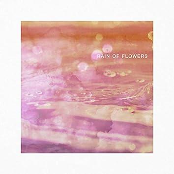 Rain Of Flowers 꽃비