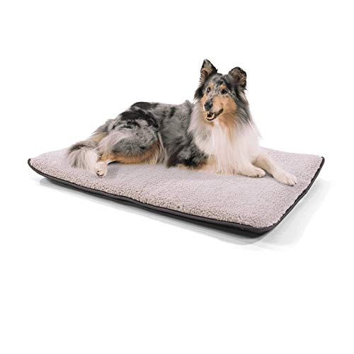brunolie Finn mittlere Hundedecke, geruchsneutral, hygienisch und rutschfest, waschbare Hundematte in Beige, passend für die Transportbox oder das Sofa, Größe M (100 x 70 x 5 cm)