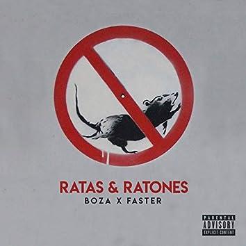 Ratas y Ratones