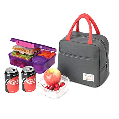 Tote Freezable Lunch Bag for Women, Lunch Box Insulated Lunch Container for Work, School and Picnic