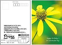 バースデーポストカード 150枚セット 選べるデザイン 宛名面オーダー印刷 私製はがき