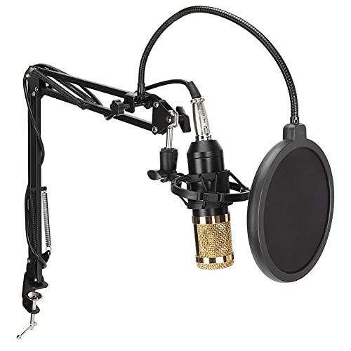 Juego de micrófono de Condensador, Juego de micrófono de Estudio con Tarjeta...